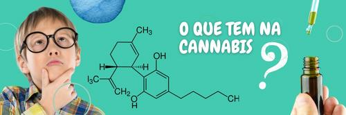 O que tem na Cannabis?