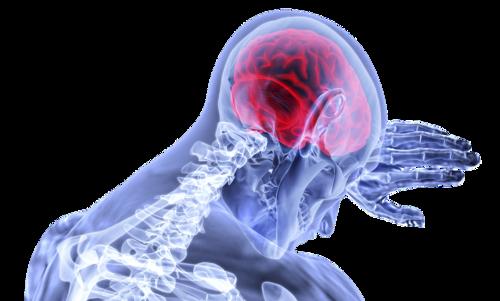 Crise Convulsiva Febril - Investigação Neurológica - Parte 2